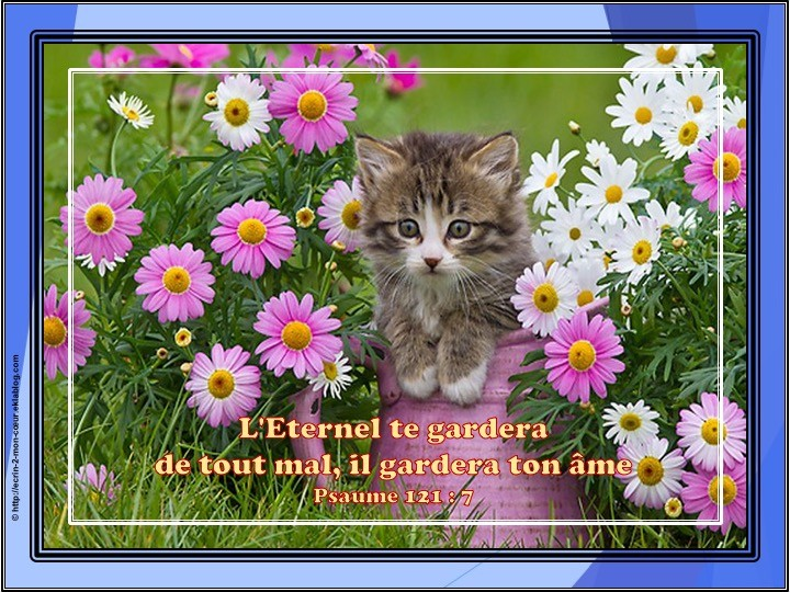 Psaume 121 : 7