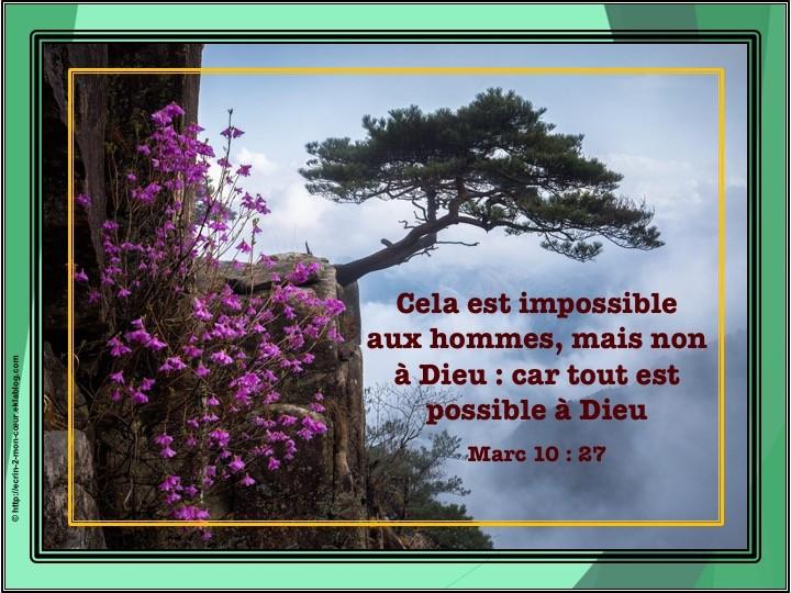 Marc 10 : 27