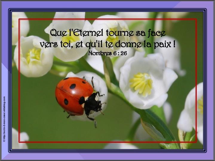 Nombres 6 : 26
