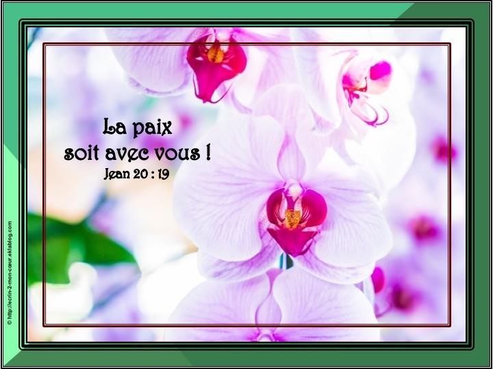 Jean 20 : 19