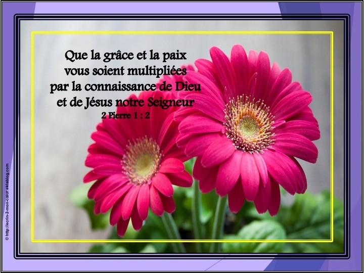 2 Pierre 1 : 2
