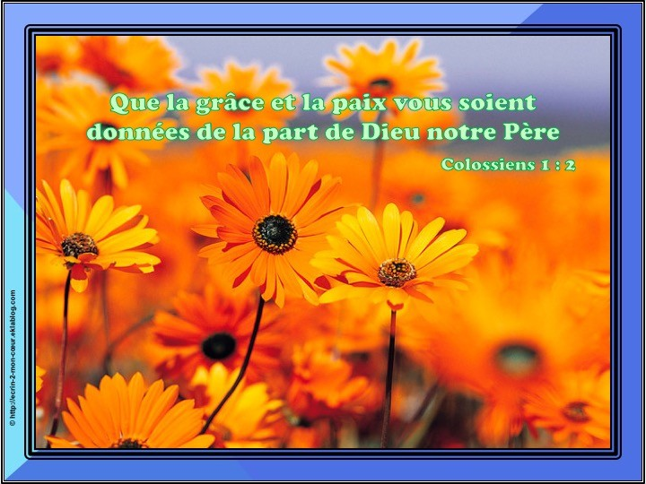 Colossiens 1 : 2