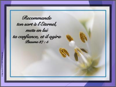 Versets : Réconfort, encouragement