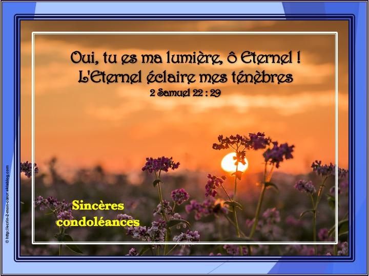 2 Samuel 22 : 29